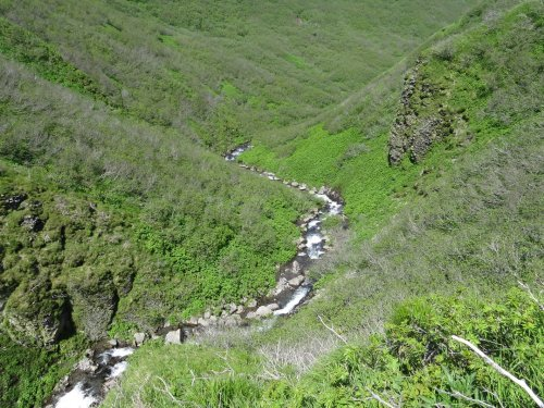 У каньона