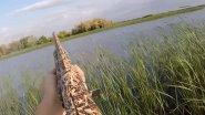 Охота на уток. Осень. МР-155 Русич