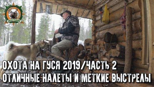 Охота на гуся 2019/Гусь попёр/Счастье есть/2 часть