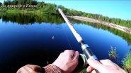 Рыбалка в конце июня.
