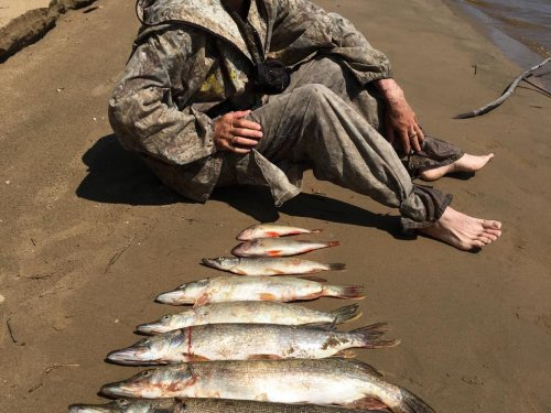 На Томи в день рыбака