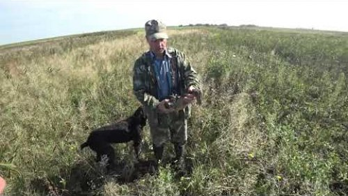 "Охота на уток ""Родные края 2"" ОСЕНЬ (Duck hunter autumn)"