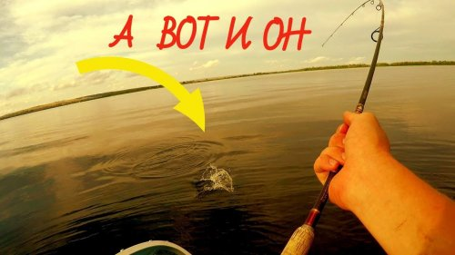ВОТ ЭТО ПОКЛЕВИЩЕ!!! Ловля ЖЕРЕХА. Матюха отличился!!!Рыбалка на Волге. Fishing.