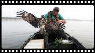 Супер способ для ловли любых видов рыб, даже коршуна поймал.