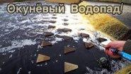 ОКУНЁВЫЙ ВОДОПАД/РЫБАЛКА НА ПОПЛАВОК/ВЕДРО РЫБЫ/50 ЧЕРВЕЙ И 50 ОКУНЁЙ!!!