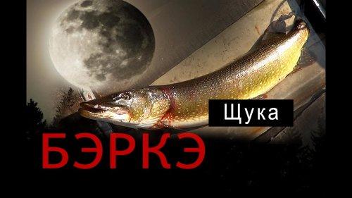 БЭРКЭ. Рыбалка в Якутии.