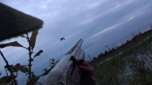 Охота на утку, Открытие осень 2019 (Duck hunting, Opening season 2019)