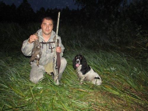 Ходовая охота с подружейной собакой