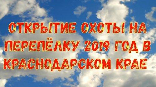 Открытие охота на перепёлку 2019 год в Краснодарском крае