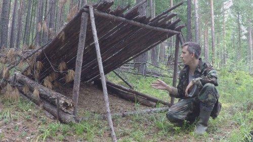 В тайгу за дикоросами, нашёл старое зимовьё, галечник для глухаря.