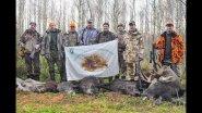 Охота на лося, кабана и косулю. Охота в Республике Беларусь, часть-4.