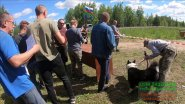 Выставка охотничьих собак г ВЕЛЬСК 23 06 2019