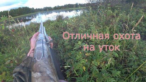 Отличная охота на уток