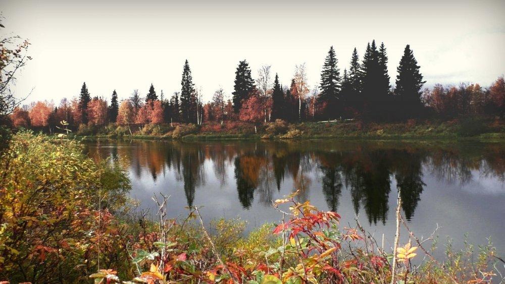 Озеро осенью.
