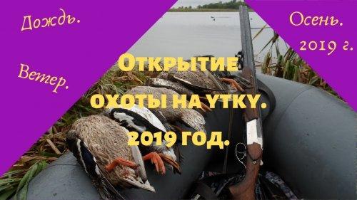 Открытие охоты на утку.2019 год.