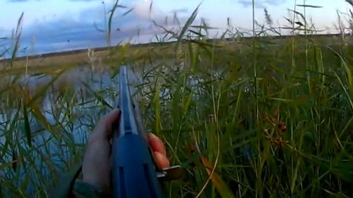 Классная охота на утку, красивые налеты