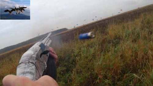 Охота на уток, куропаток, пристрелка патронов