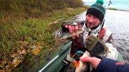 ОСЕННЯЯ РЫБАЛКА/ УЛОВИСТАЯ ПРИМАНКА НА ЩУКУ И ОКУНЯ/ FISHING TROLLING/PIKE!