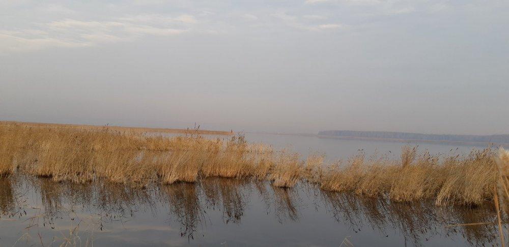 Вид из скрадка на озеро