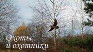 В погоне за вальдшнепом - Владимирская область