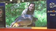 Выставка рыбалка охота туризм 2019 осень. Обзор рыболовной выставки