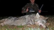 Ночная охота на волка. Запись попаданий на Pulsar Trail XP50
