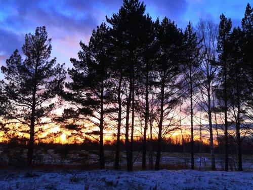 Осиновские закаты