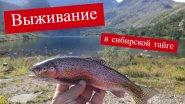 Выживание в Сибирской тайге