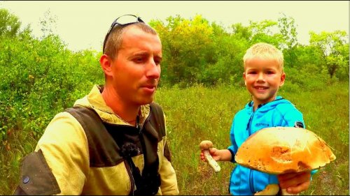 Охота за грибами. Белый грибы, подосиновики. Набрали полные ведра!!!