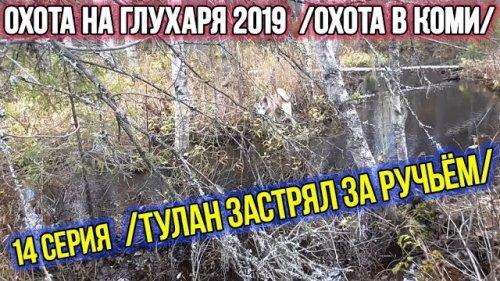 Охота на глухаря 2019 ?? Охота в Коми. 14 серия.