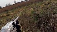 Отличное открытие охоты на зайца