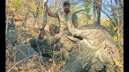 Охота на буйвола в Зимбабве