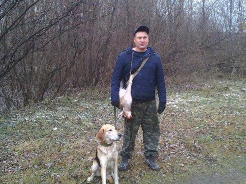 Охота на охоту .