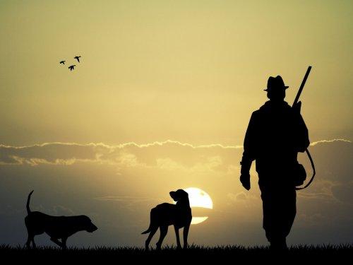 Охоту в искусственных условиях планируют поддержать