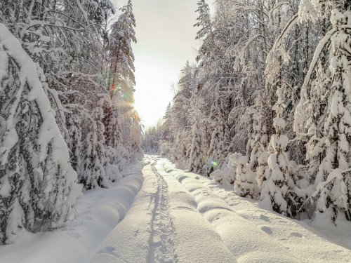 снег пушистый