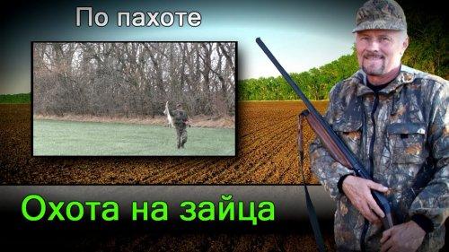 Охота на зайца. Hunting for hares