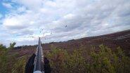 Лучшие моменты охоты на гуся и утку. Только выстрелы