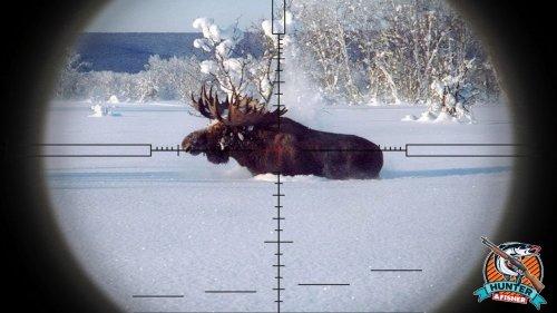 Загонная охота на лося 2019