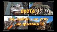 Охота на зайца , на утку , на фазана !!!