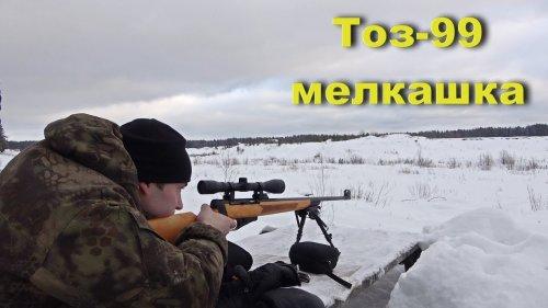 ТОЗ-99. Самозарядная мелкашка. Отстрел Охотником - 410 Э.