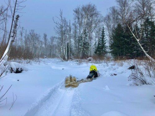 В Сибири нынче зима балует теплом...