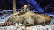 Охота на лося, закрытие сезона