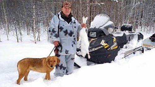 Охота на зайца с гончей по очень глубокому снегу, 2020 год