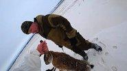 Как выследить зайца на охоте в зимний период. Лучшие моменты охоты на зайца 2020