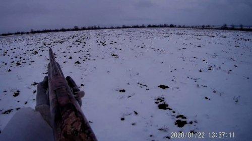 В охоте на зайца не всегда везет охотнику