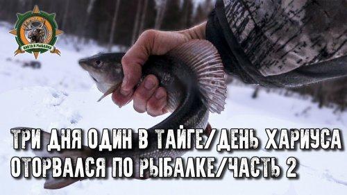 Три дня один в тайге/День рыбалки/Наловил крупняка!/Часть 2
