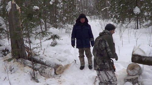 На снегоходе Вектор 551 на таежную избу едем с Кузьмичом