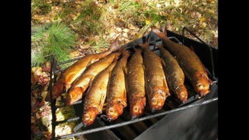 Рыба горячего копчения. Рецепт приготовления