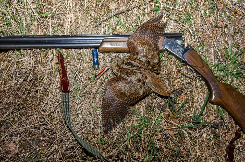 Девятый. Весенняя охота 2020 закрыта.