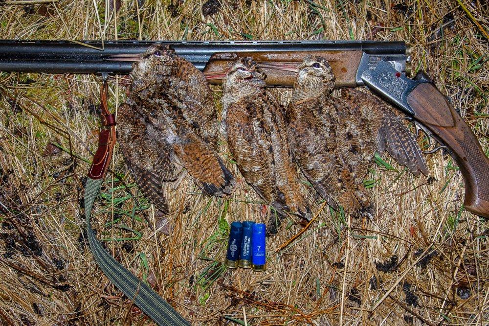 Сезон весенней охоты 2020 открыт!